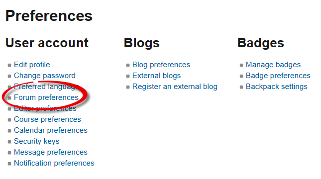 Screenshot of preferences interface