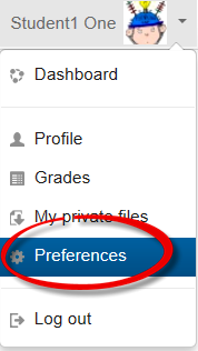 Screenshot of user menu with Preferences highlighted