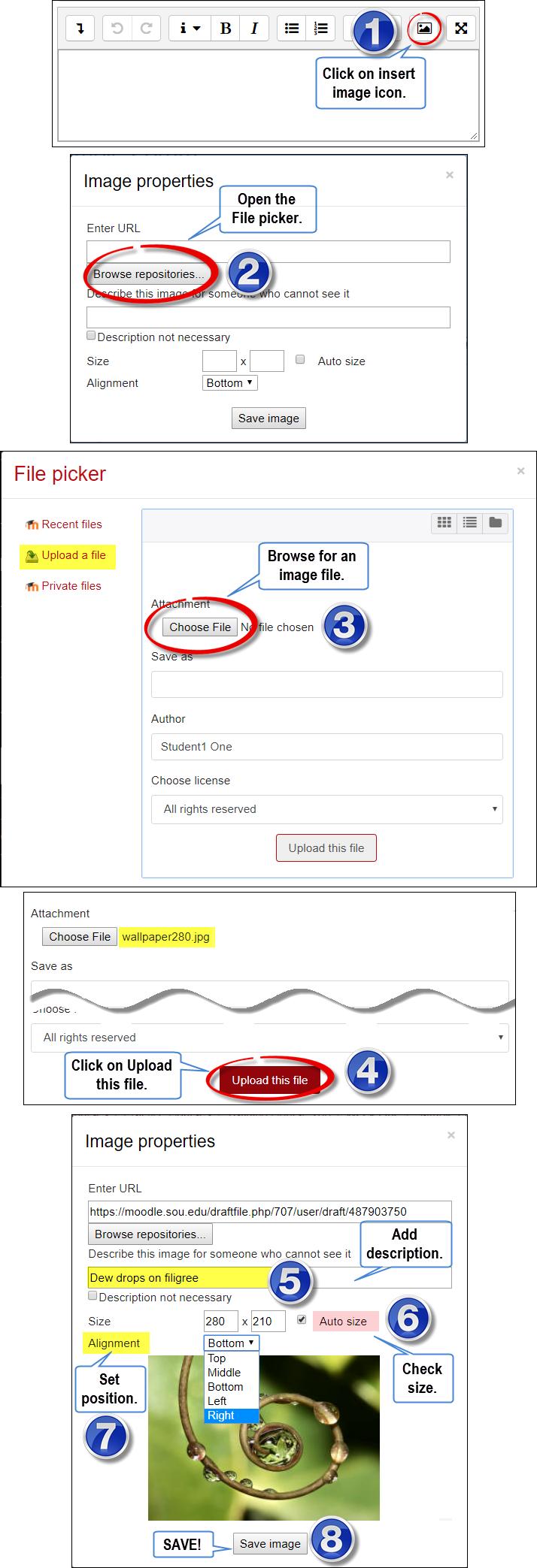 Screenshots of image options
